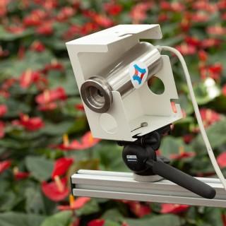 Planttemperatuur camera anthuriums